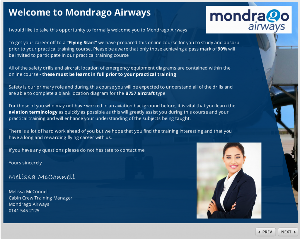Welcome to Mondrago Airlines image